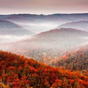 Pieces of Eden: Extraordinary Photography by Evgeni Dinev, Part I