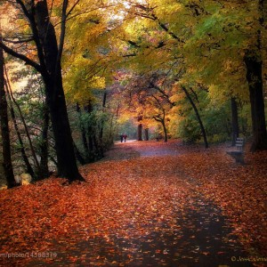 Autumn Passages: Beautiful Fine Art Photography by Jessica Jenney