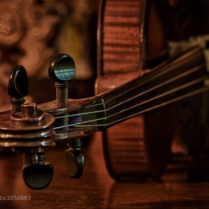 The Old Violin by Mark Neal