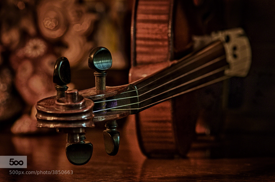 Photograph HDR for Real – The Sum of its Parts - The Old Violin by Mark Neal