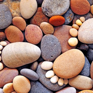 Stepping Stones: Wonderfully Whimsical Pebble Art by Iain Blake