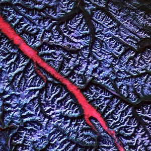 Earth from Space: Rocky Mountain Trench by NASA