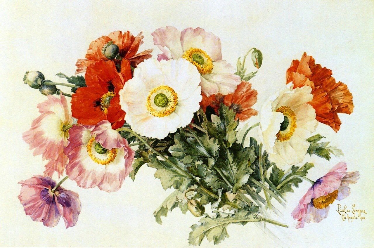 Paul-de-Longpre-Iceland-Poppies-Private-collection - 2