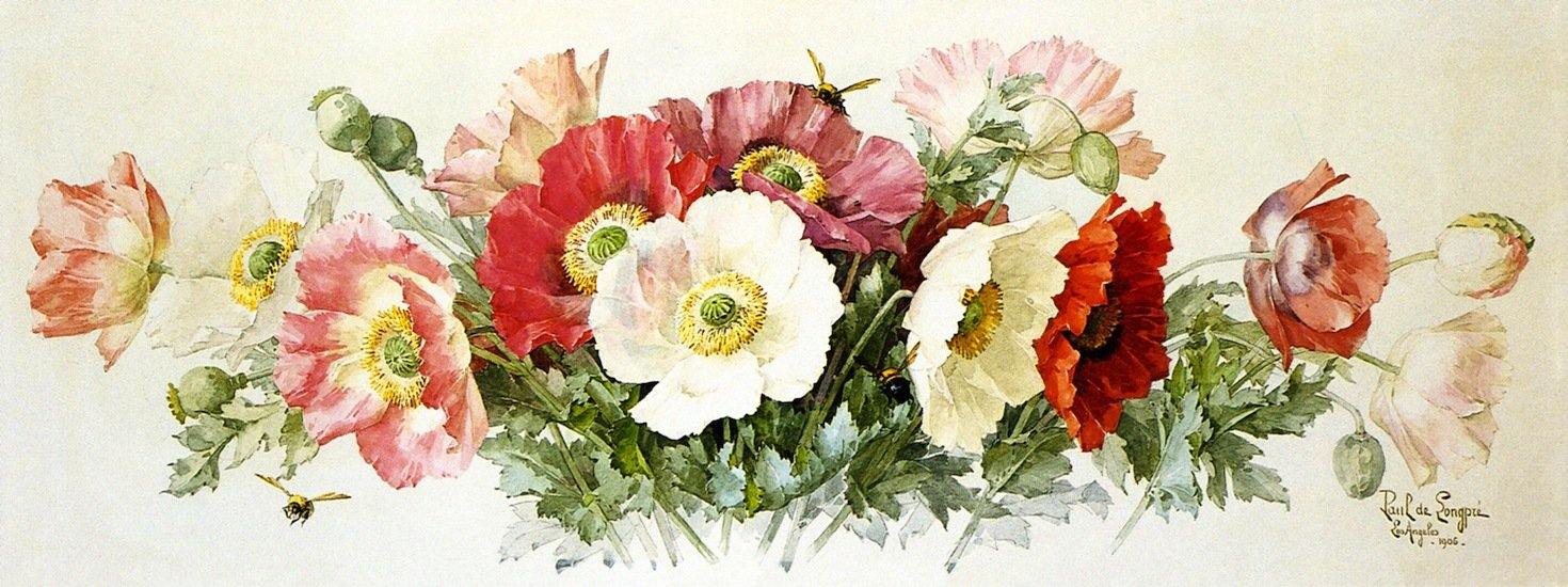 Paul-de-Longpre-Icelandic-Poppies-Private-collection 3