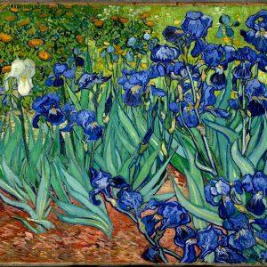 Irises, by Vincent van Gogh, 1889