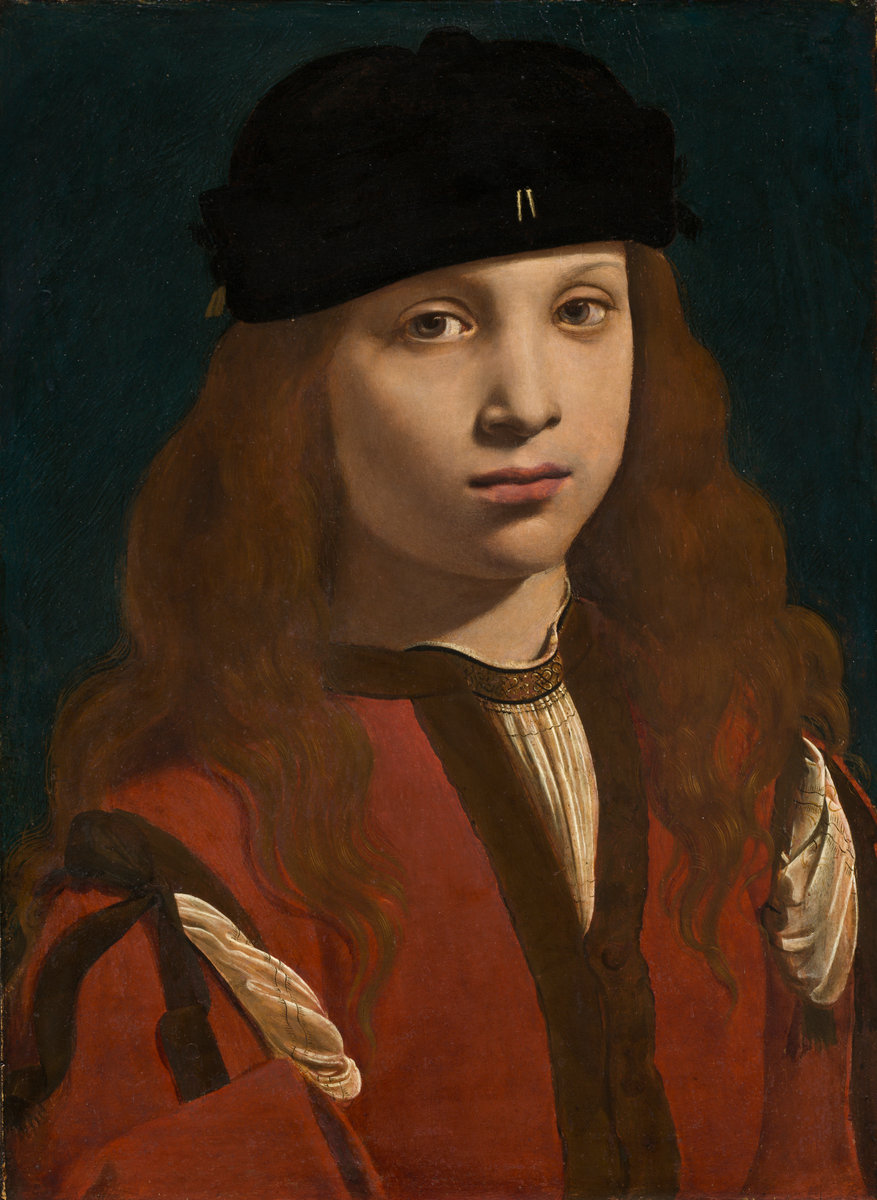 Portrait of a Youth, by Giovanni Antonio Boltraffio, circa 1495/1498