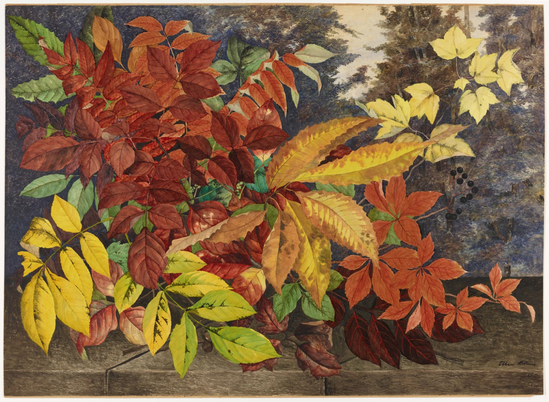 Autumn Leaves, by Ellen Robbins, circa 1870