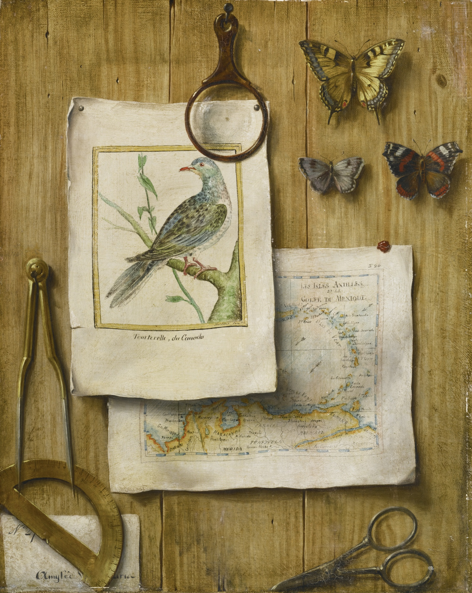 A Trompe L'Oeil with Magnifying Glass, Butterflies, Cartographic Instruments, a Map, and Prints - 1592px